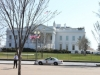 the-white-house-915